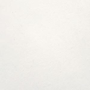 Flat White (non metallic)